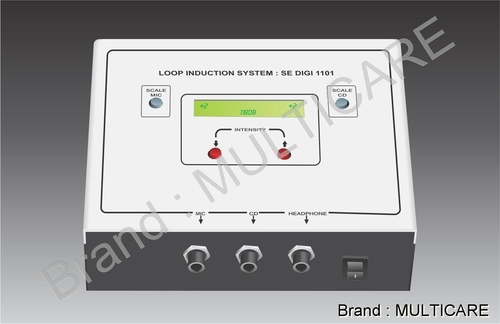 Digital Loop Induction System