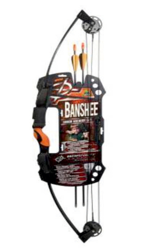 Team Realtree Banshee Quad For Professional Archery Trainers