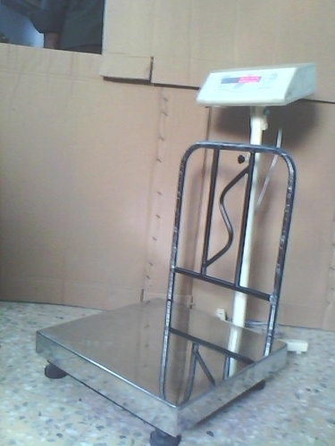 Digital Weighing Systems