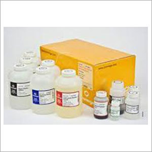Nucleic Acid Purification Kit