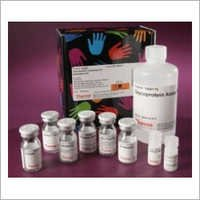 Class Specific Protein Quantitation Kit