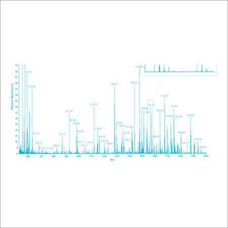 Protein Mass Spectrometry Analysis