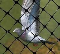 Anti Bird Control Net