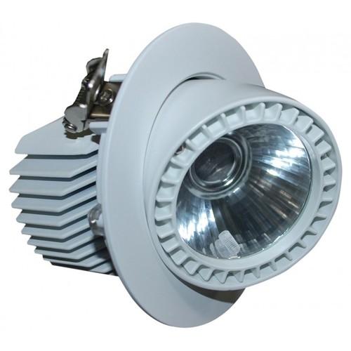 FortuneArrt 20 WATT LED COB Range LIght