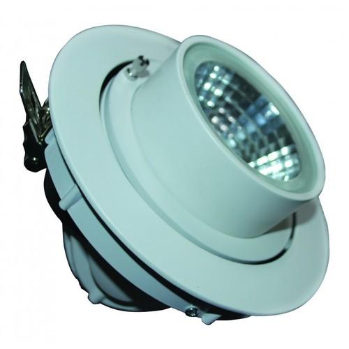 FortuneArrt 30 WATT LED COB Range Light