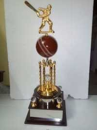 Customized Cricket Trophy