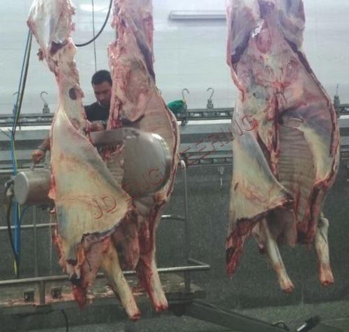 Carcass Splitting System