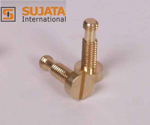 Brass Round Head Double Thread Screw