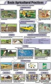 Basic Agricultural Practices Chart