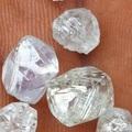 Rough Uncut Diamonds