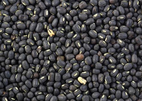 Black Urad Dal
