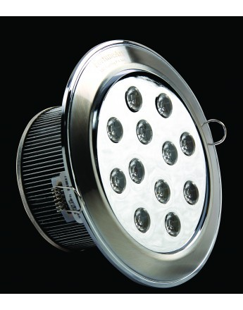 FortuneArrt 12 WATT LED SpotLight