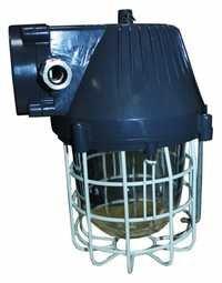 FortuneArrt 40 WATT LED Flame Proof Light
