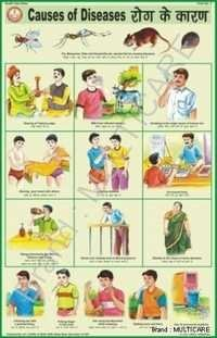 Causes of Diseases Chart
