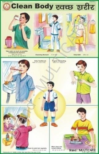 Clean Body Chart