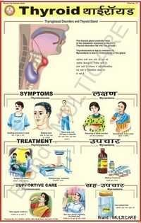 Thyroid Chart