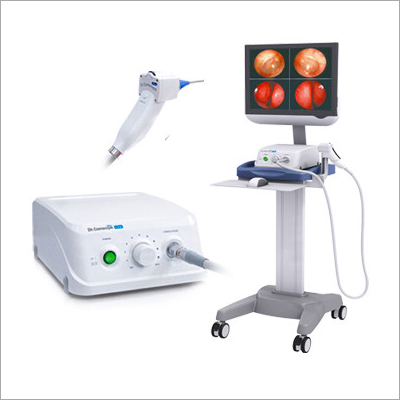 Endoscopic Camera System