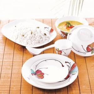 Borosil 35pc Melamine Dinner Set- Vibgyor Fidenza