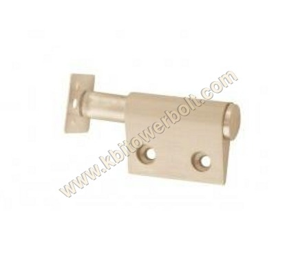 Brass Mango Push Magnet