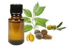 nutneg oil oleorosin