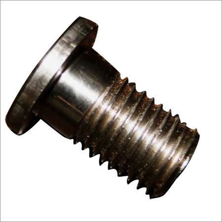 Radiator Bleeder Screw