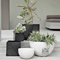 Bowl Shaped Planters