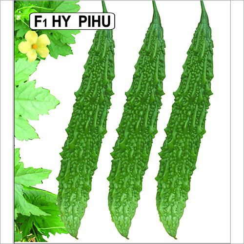 Pihu Seeds