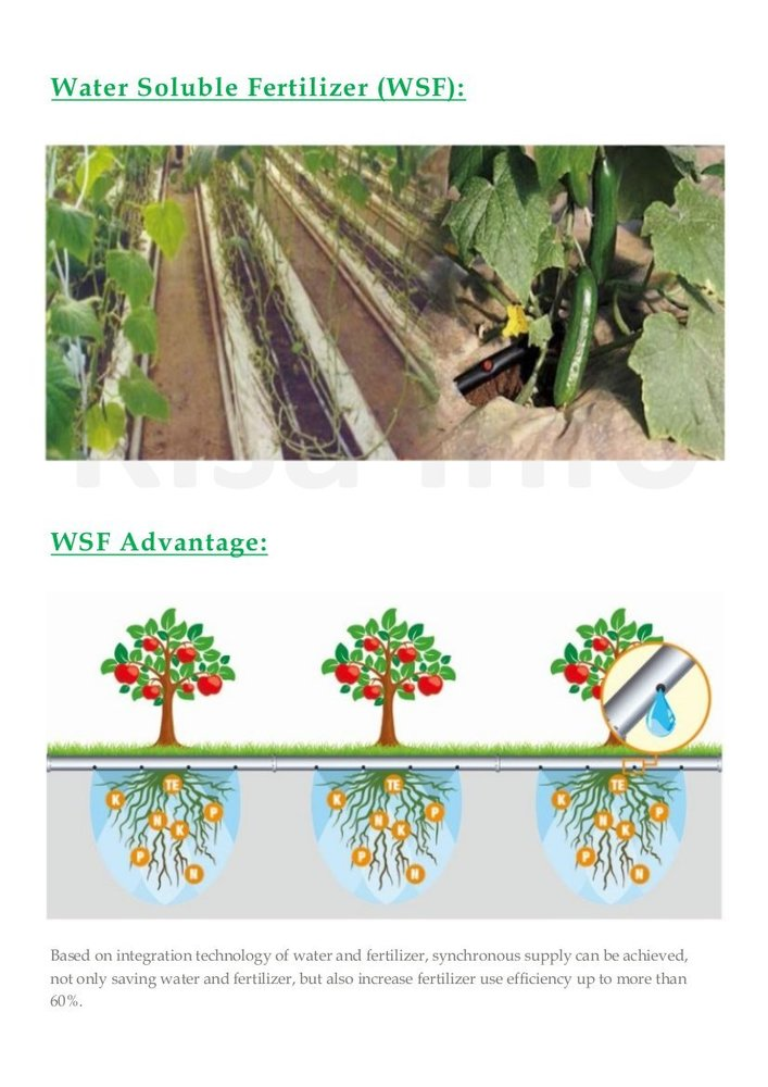 Water Soluble Fertilizer (WSF)