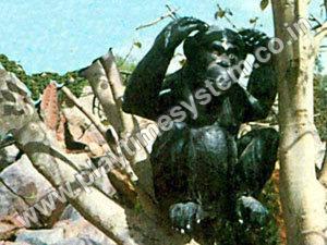 FRP Animal - Chimpanjee