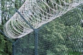 Concertina Wire