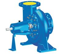 DBL Utility Pump