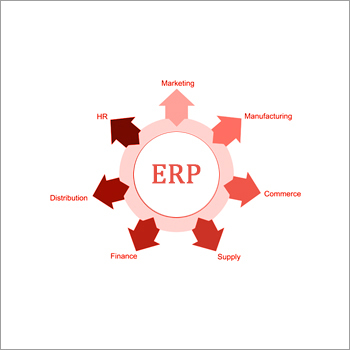 Customized ERP solutions