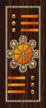 Micro Coated Door Skin