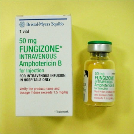 Amphotericin B Injection