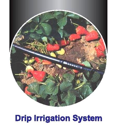 Farm Irrigation System