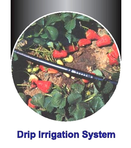 Farm Irrigation System