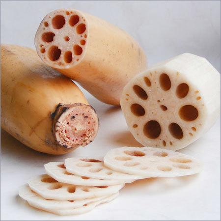 Lotus Root