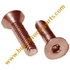 Silicon Bronze Allen Bolts