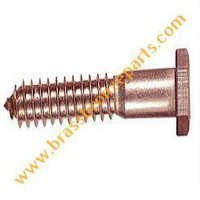 Silicon Bronze Lag Bolts