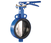 Wafer and Lugged Butterfly Valve
