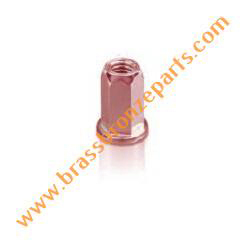 Silicon Bronze Hex Rivet Nuts
