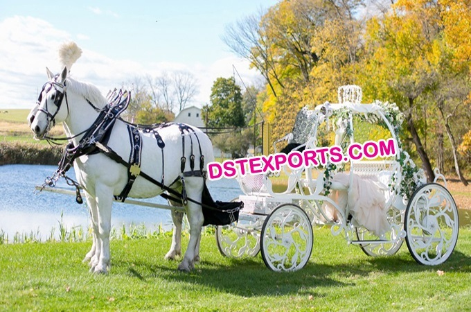 Bridal Cinderella Horse Carriage Bugghy