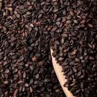 Z-Black Sesame Seed