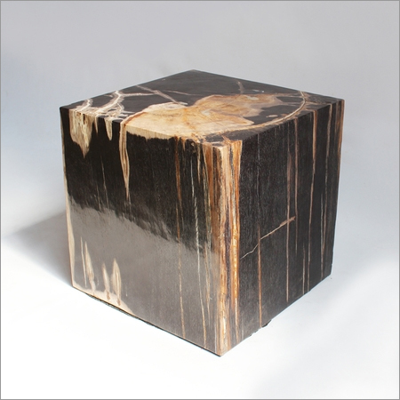 Square Petrified Wood Side Table