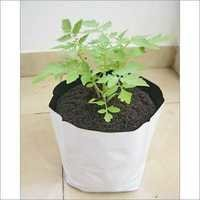 LDPE White Grow Bag
