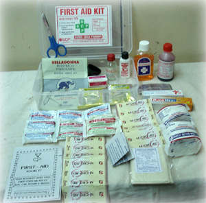 Factory First Aid Box