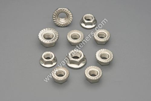 SS  Flange Nuts