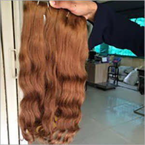 Human Hair Colored Extension