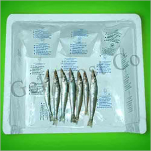 Ice Fishing Packs