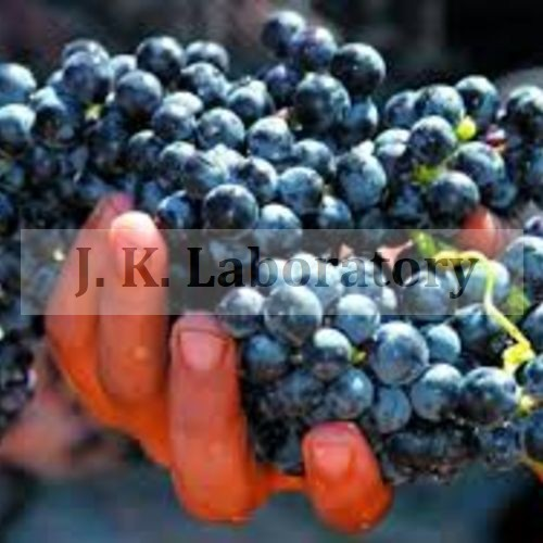 Grapes Testing Services